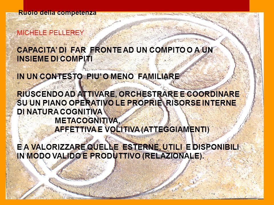 CAPACITA' DI FAR FRONTE AD UN COMPITO O A UN INSIEME DI COMPITI