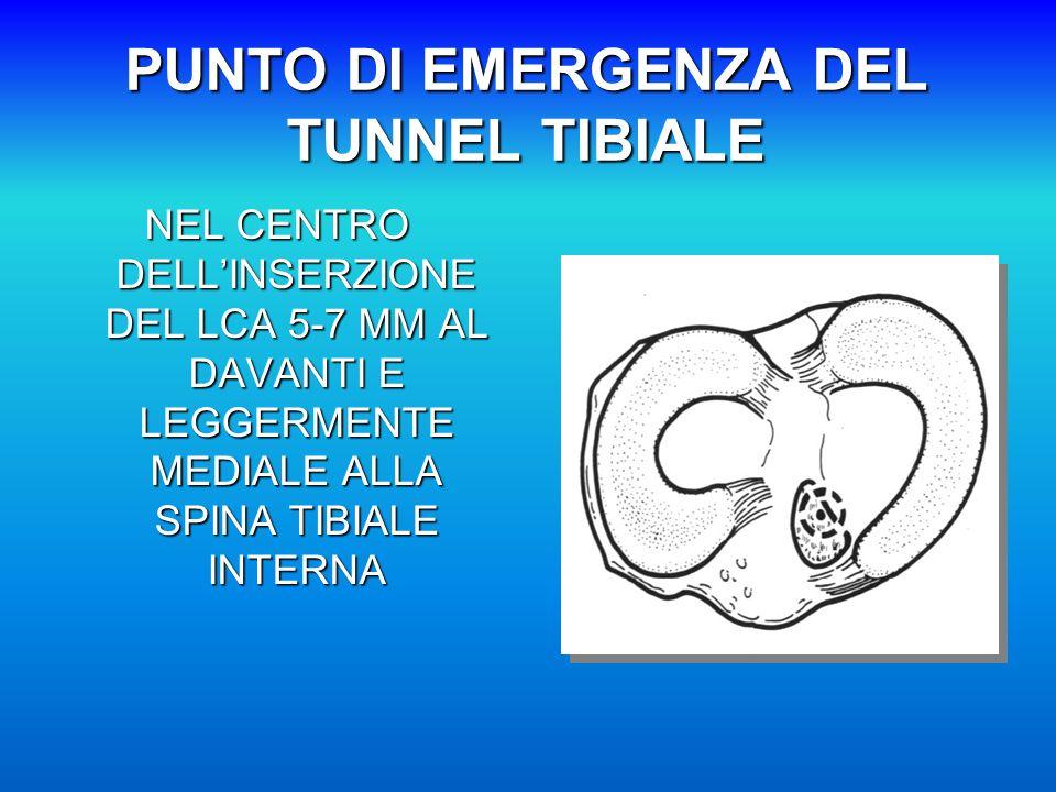 PUNTO DI EMERGENZA DEL TUNNEL TIBIALE