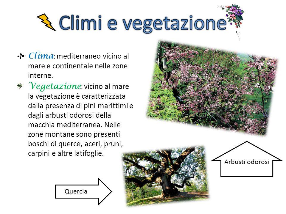 Climi e vegetazione Clima: mediterraneo vicino al mare e continentale nelle zone interne.