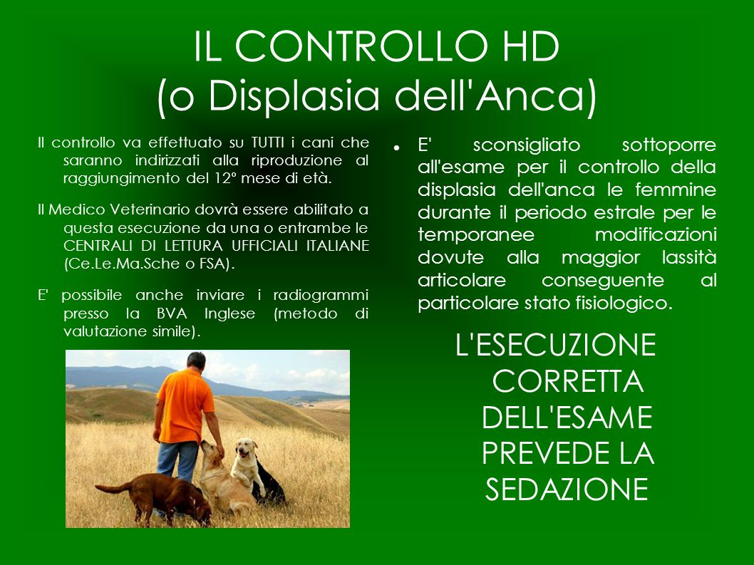 IL CONTROLLO HD (o Displasia dell Anca)