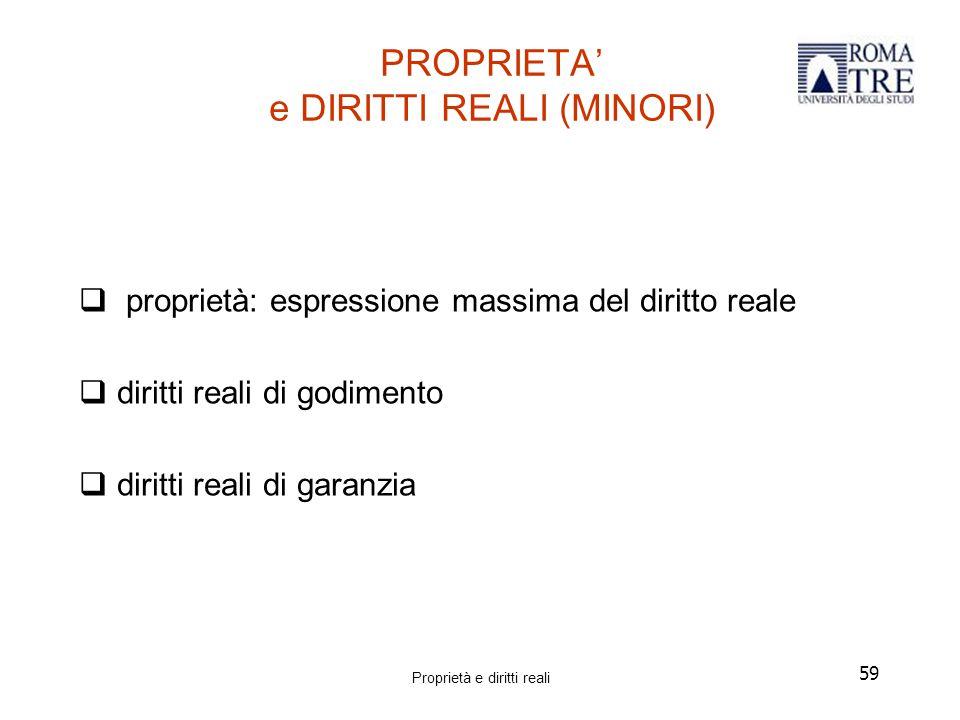 PROPRIETA' e DIRITTI REALI (MINORI)