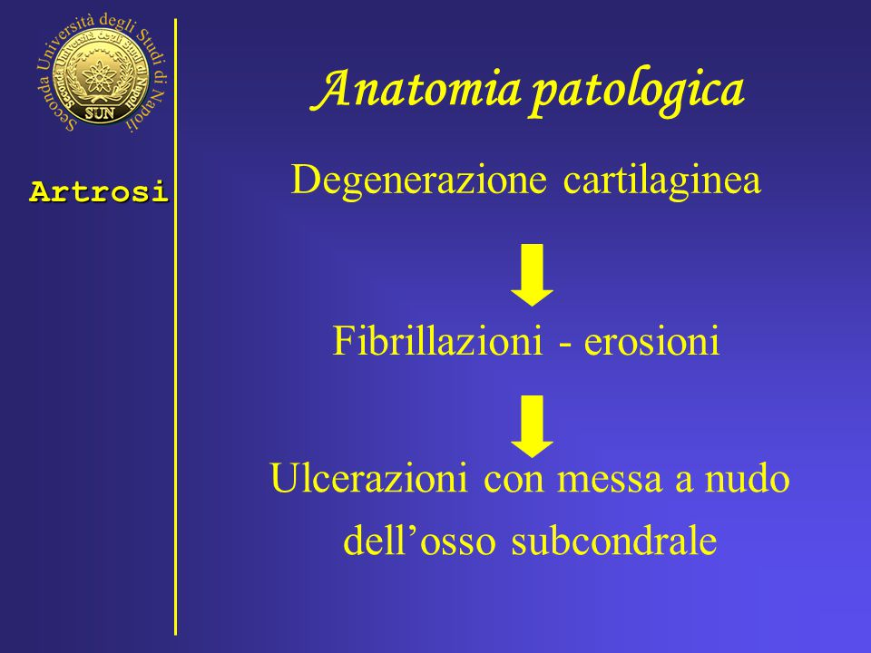 Anatomia patologica Degenerazione cartilaginea