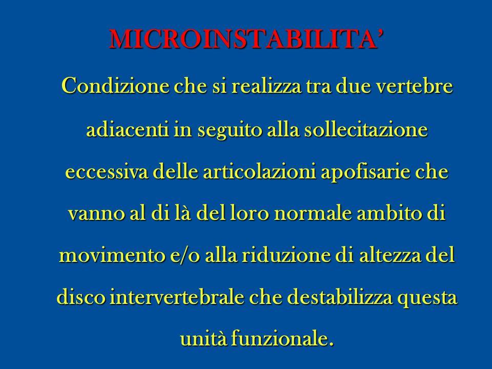 MICROINSTABILITA'