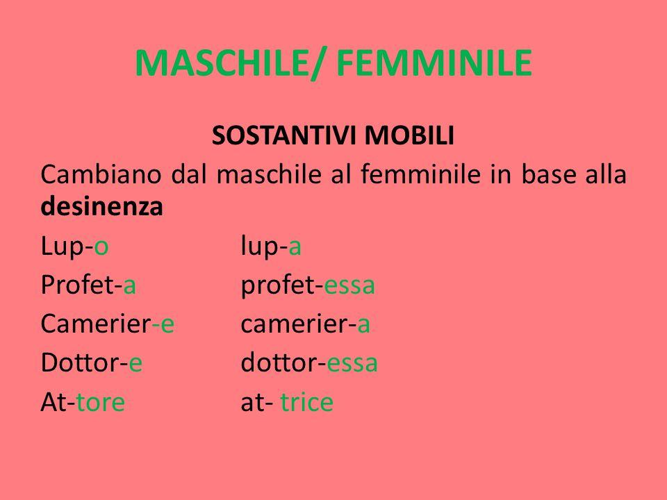 MASCHILE/ FEMMINILE