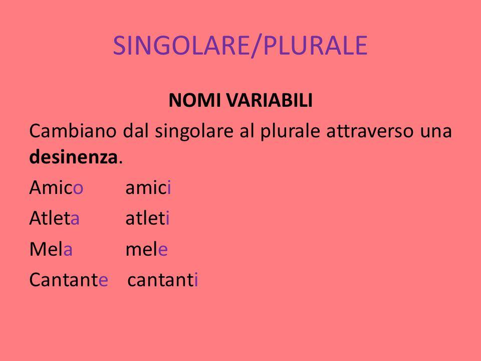SINGOLARE/PLURALE NOMI VARIABILI Cambiano dal singolare al plurale attraverso una desinenza.