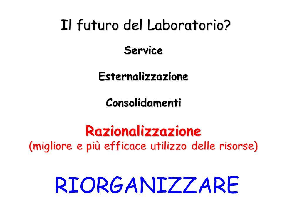 Il futuro del Laboratorio