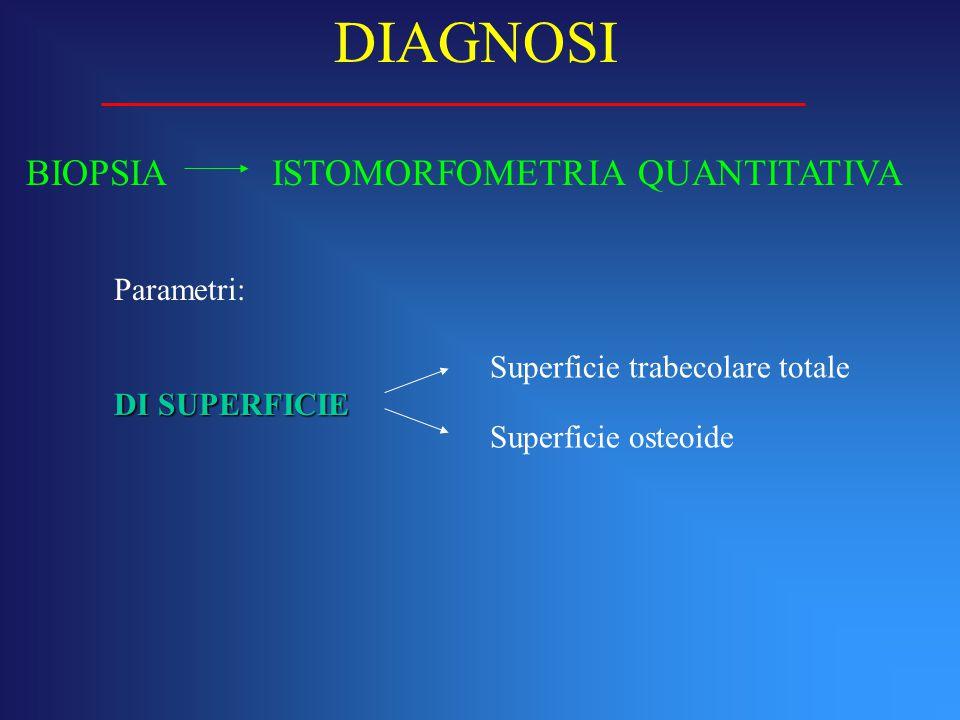 DIAGNOSI BIOPSIA ISTOMORFOMETRIA QUANTITATIVA Parametri: DI SUPERFICIE