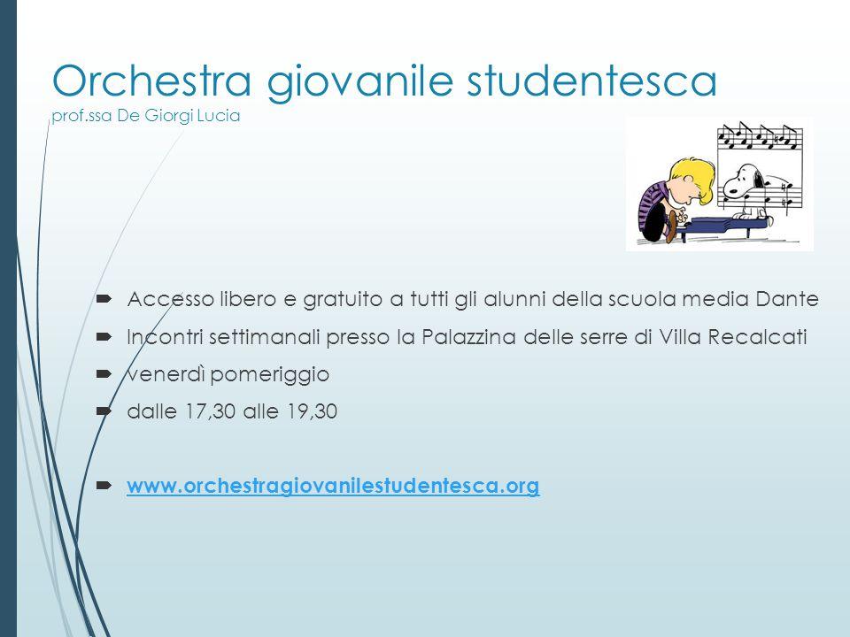 Orchestra giovanile studentesca prof.ssa De Giorgi Lucia