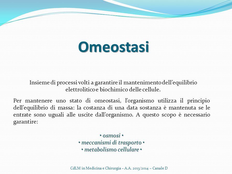 Omeostasi Insieme di processi volti a garantire il mantenimento dell'equilibrio elettrolitico e biochimico delle cellule.
