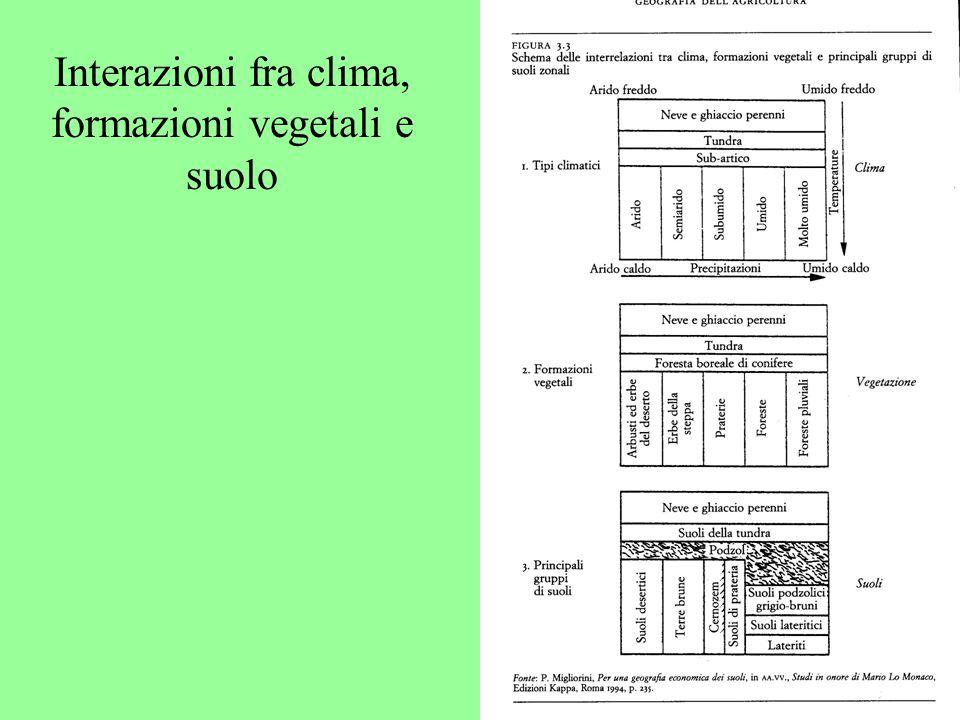 Interazioni fra clima, formazioni vegetali e suolo