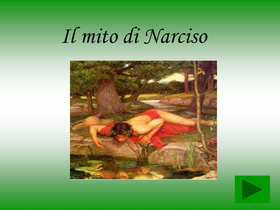 Il mito di Narciso