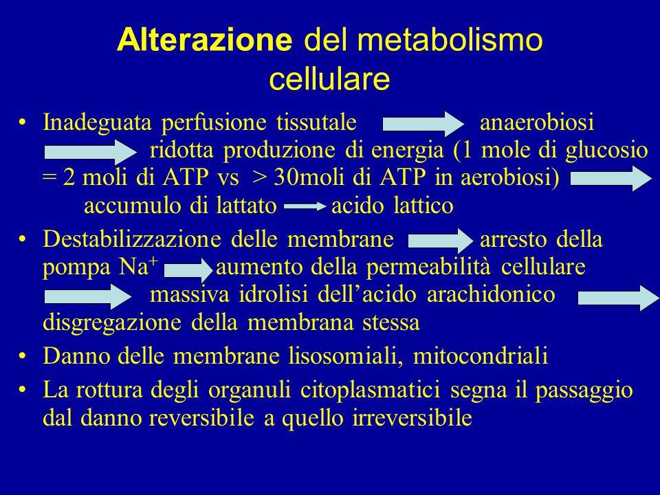 Alterazione del metabolismo cellulare