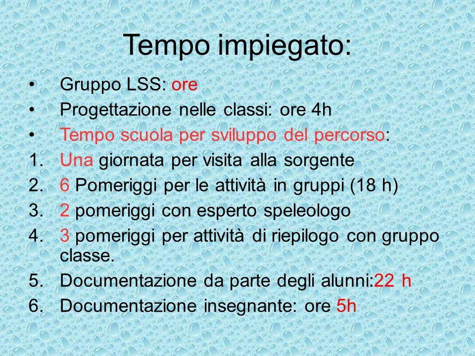 Tempo impiegato: Gruppo LSS: ore Progettazione nelle classi: ore 4h