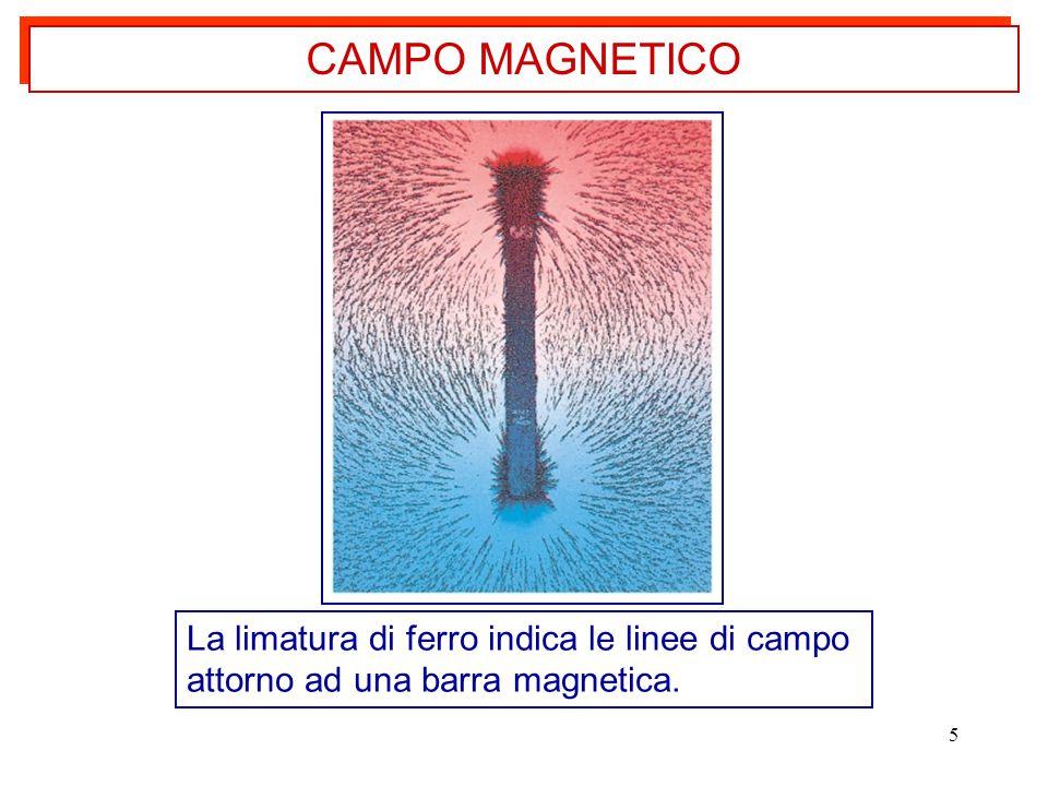 CAMPO MAGNETICO La limatura di ferro indica le linee di campo attorno ad una barra magnetica.