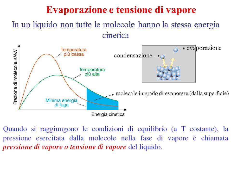In un liquido non tutte le molecole hanno la stessa energia cinetica