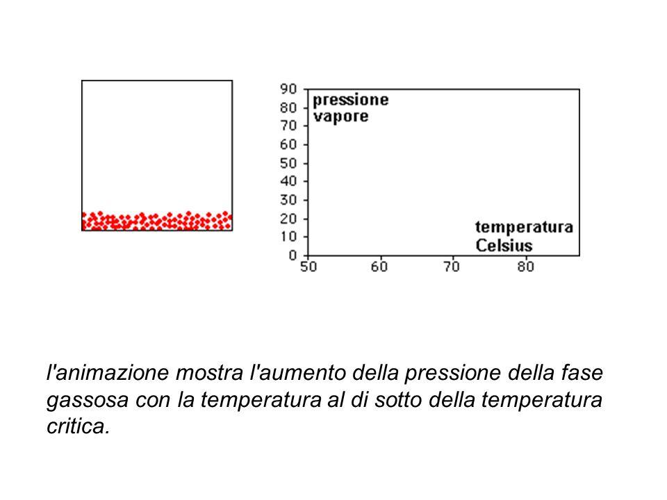 l animazione mostra l aumento della pressione della fase gassosa con la temperatura al di sotto della temperatura critica.