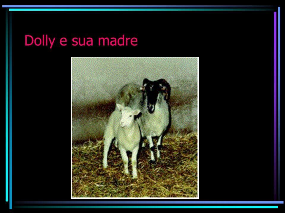 Dolly e sua madre