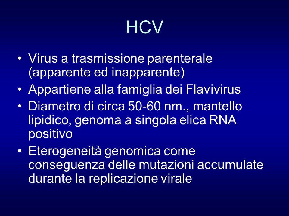 HCV Virus a trasmissione parenterale (apparente ed inapparente)