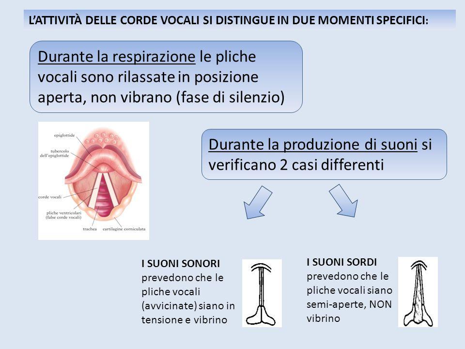 Durante la produzione di suoni si verificano 2 casi differenti