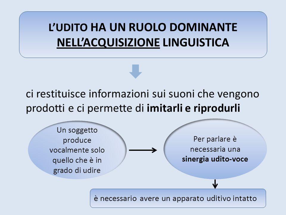 L'UDITO HA UN RUOLO DOMINANTE NELL'ACQUISIZIONE LINGUISTICA
