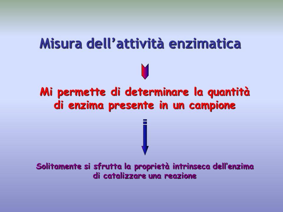 Misura dell'attività enzimatica