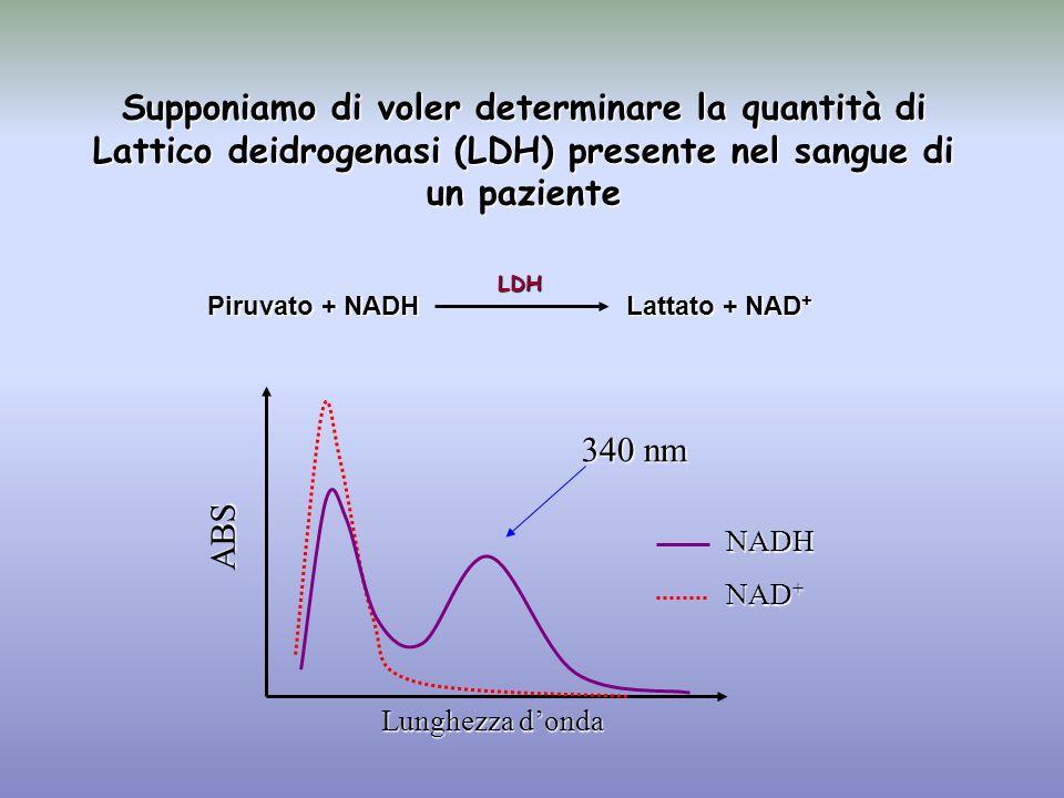 Supponiamo di voler determinare la quantità di Lattico deidrogenasi (LDH) presente nel sangue di un paziente