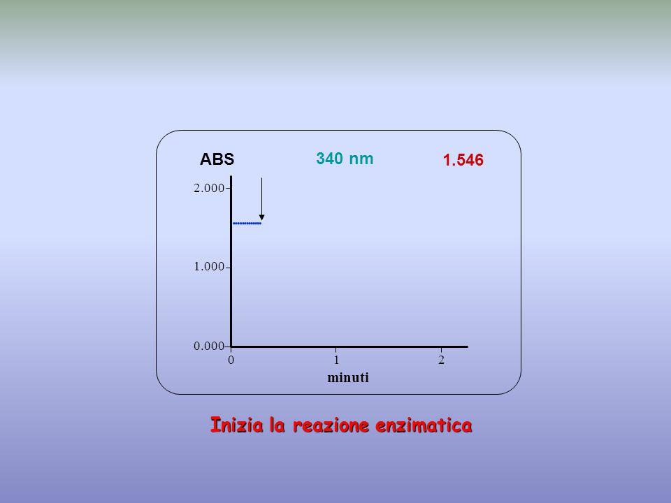              Inizia la reazione enzimatica ABS 340 nm
