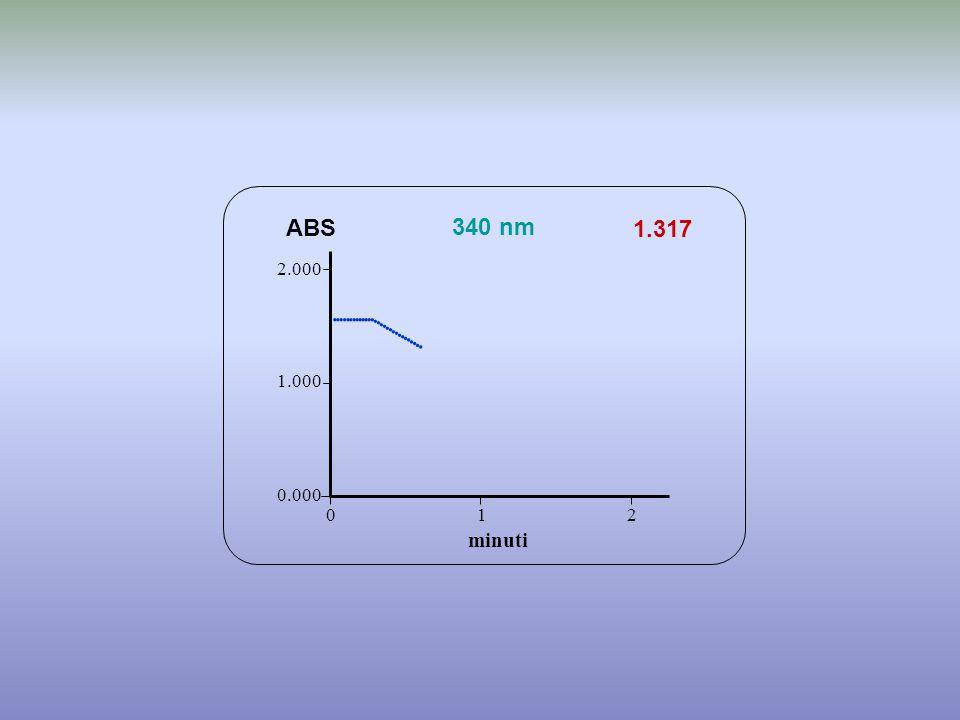                      ABS 340 nm 1.317 minuti