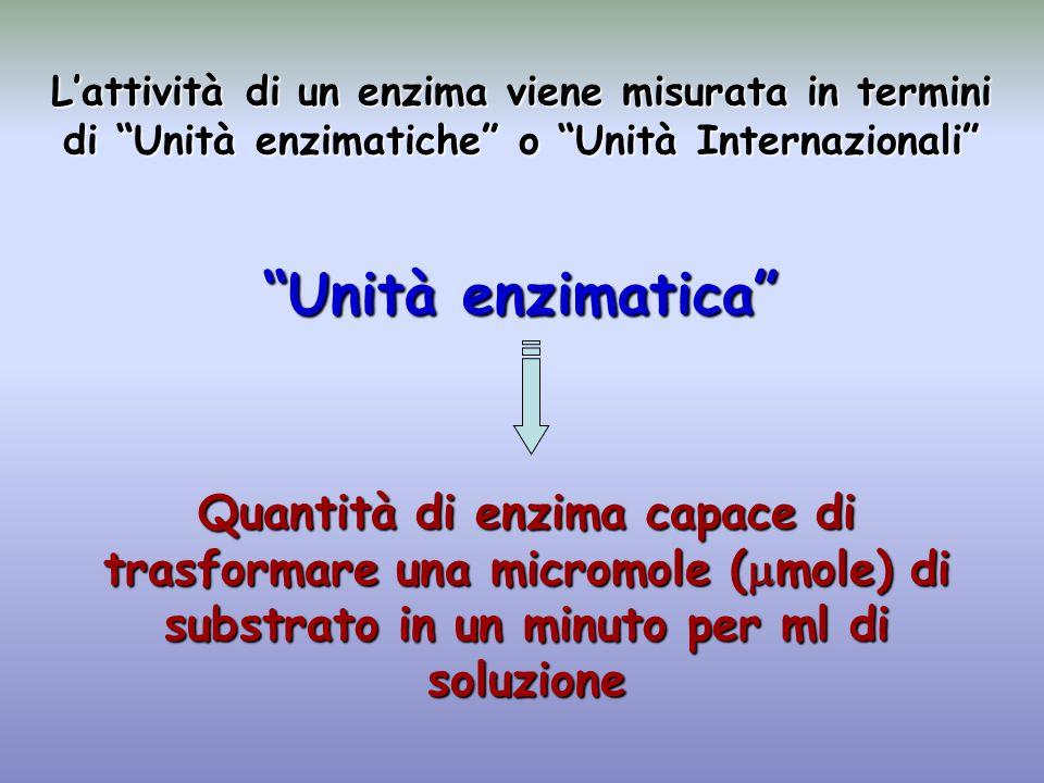 L'attività di un enzima viene misurata in termini di Unità enzimatiche o Unità Internazionali