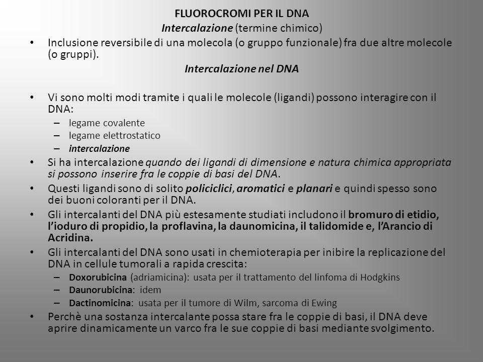 Intercalazione (termine chimico)