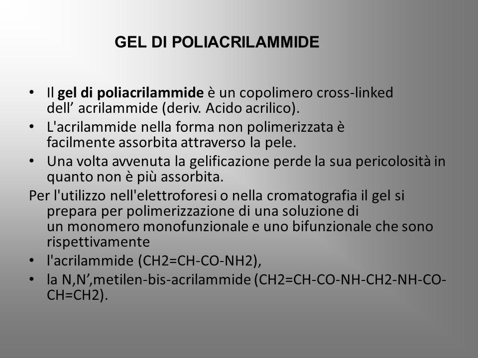GEL DI POLIACRILAMMIDE