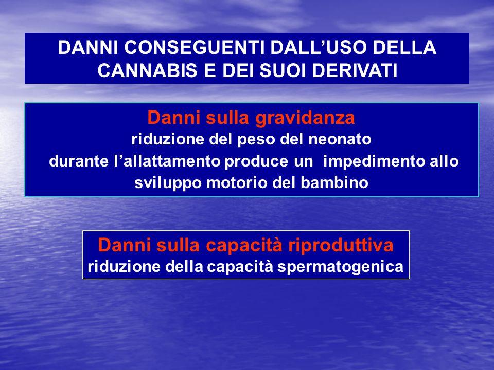 DANNI CONSEGUENTI DALL'USO DELLA CANNABIS E DEI SUOI DERIVATI