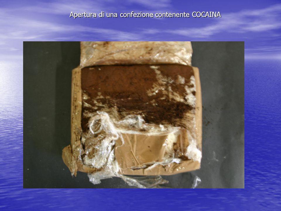 Apertura di una confezione contenente COCAINA