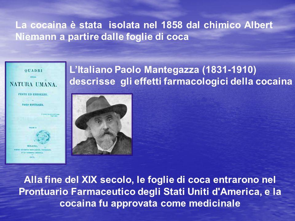 La cocaina è stata isolata nel 1858 dal chimico Albert Niemann a partire dalle foglie di coca