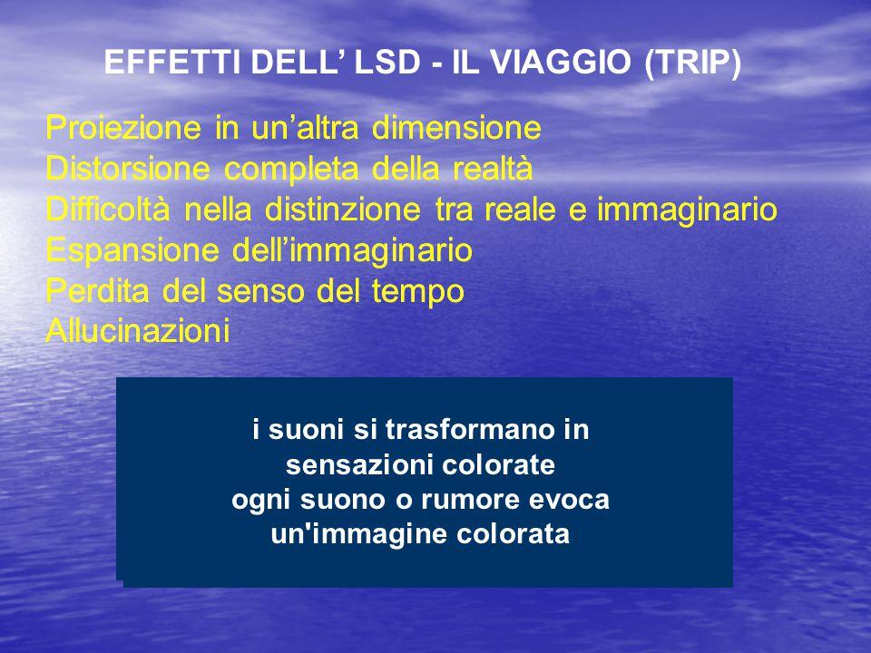 EFFETTI DELL' LSD - IL VIAGGIO (TRIP)
