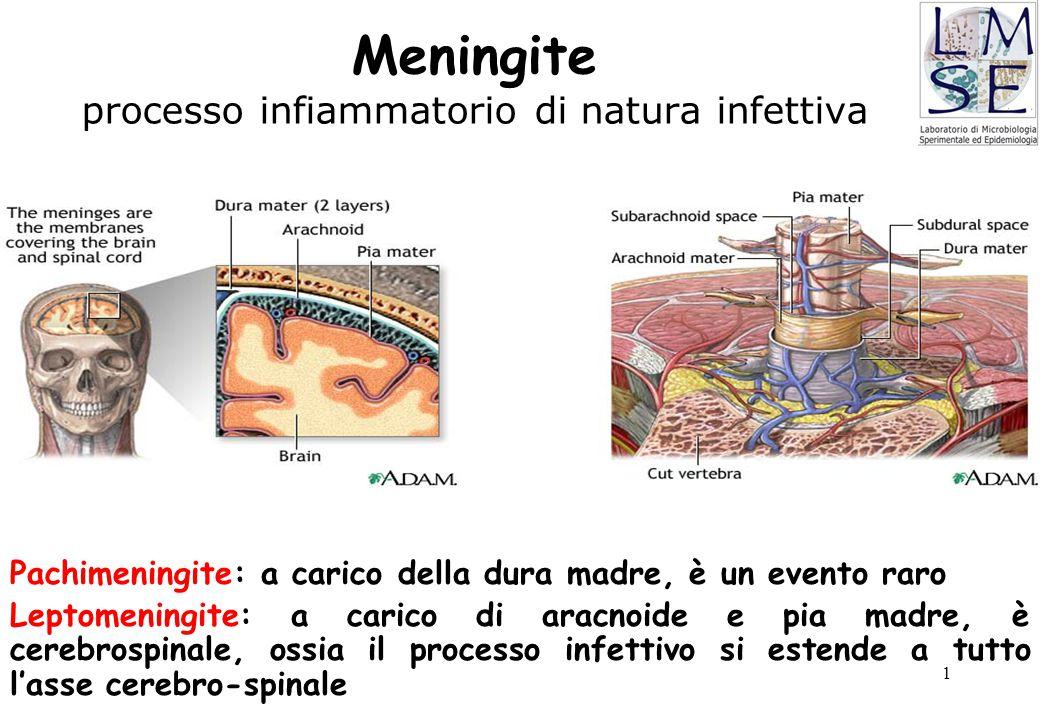 Meningite processo infiammatorio di natura infettiva