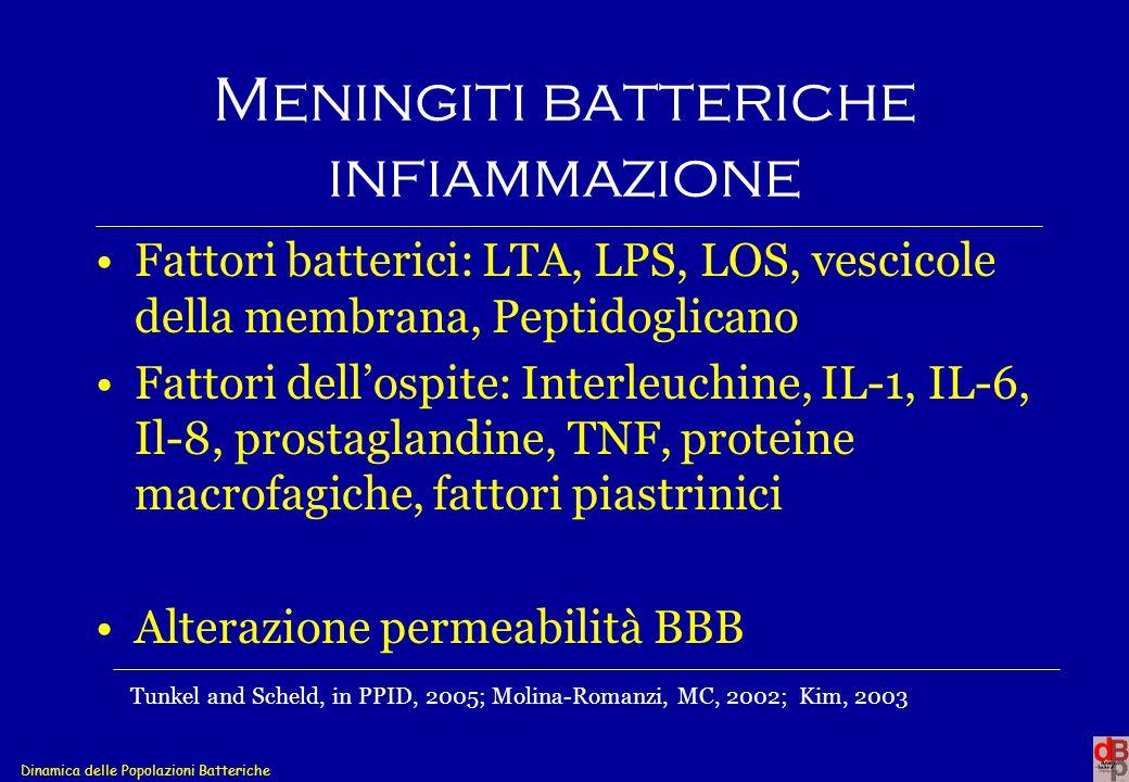 Meningiti batteriche infiammazione