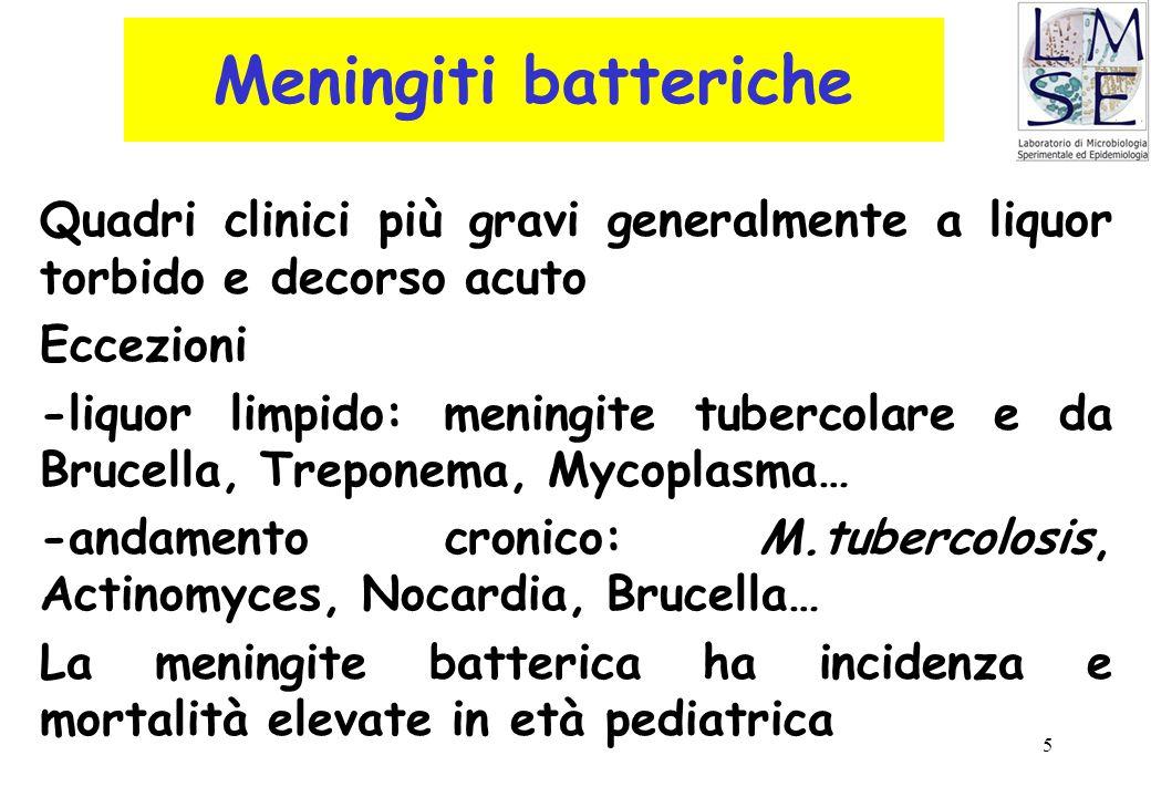 Meningiti batteriche Quadri clinici più gravi generalmente a liquor torbido e decorso acuto. Eccezioni.