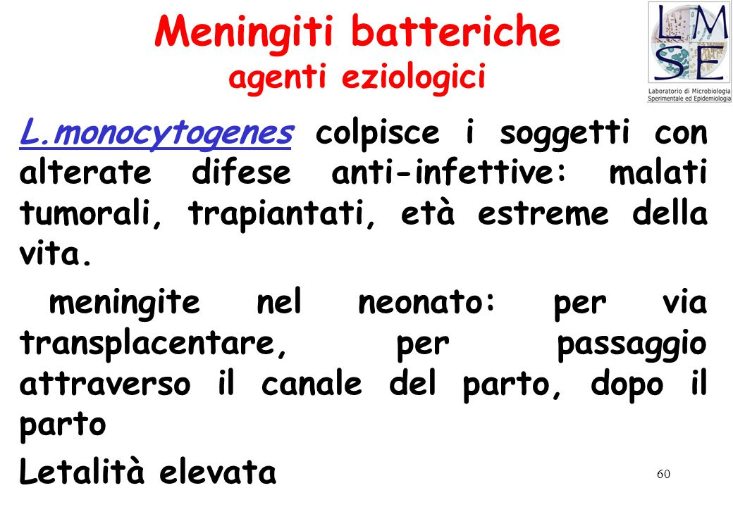Meningiti batteriche agenti eziologici