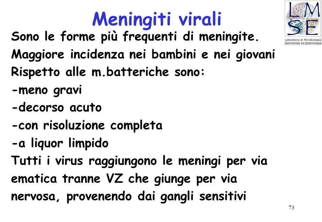 Meningiti virali Sono le forme più frequenti di meningite.