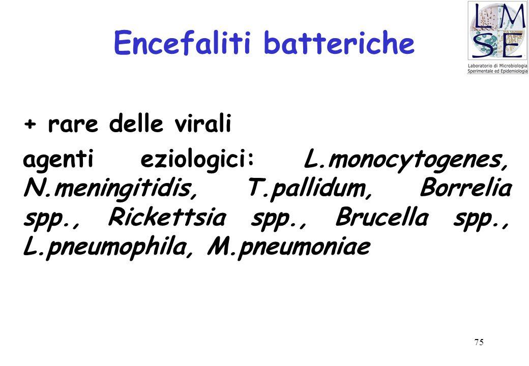 Encefaliti batteriche