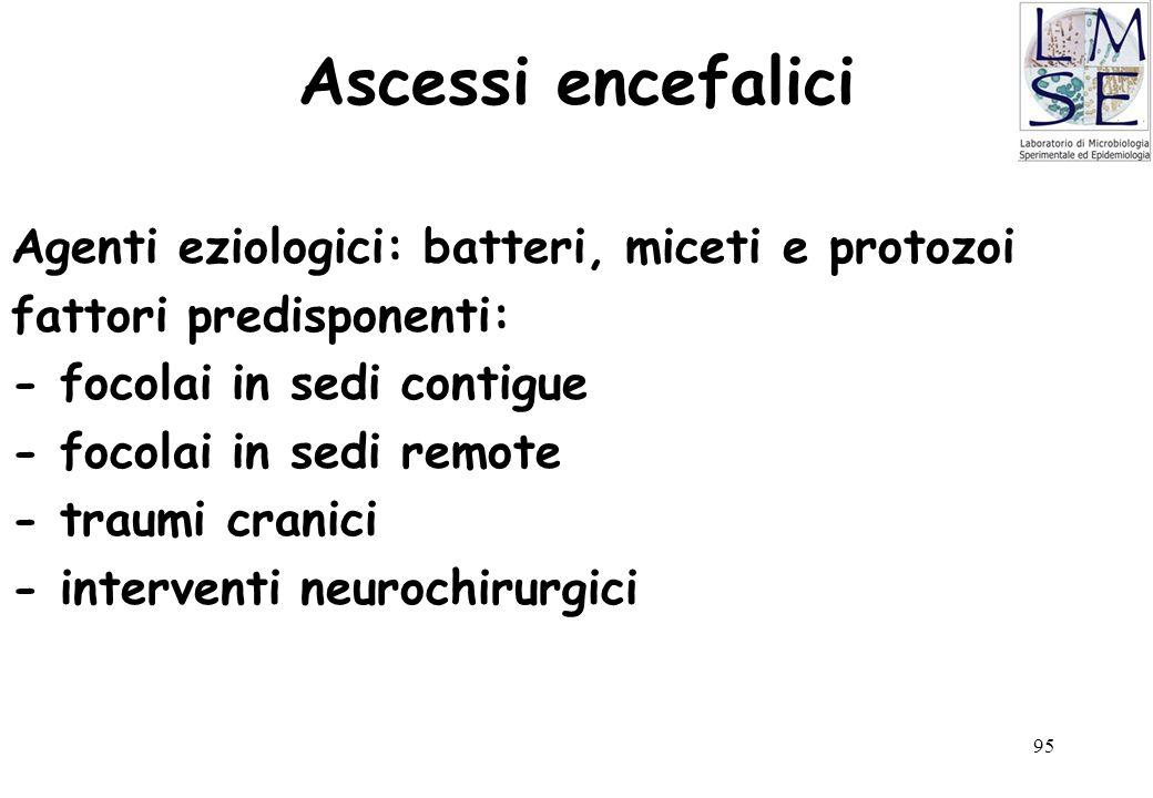 Ascessi encefalici Agenti eziologici: batteri, miceti e protozoi