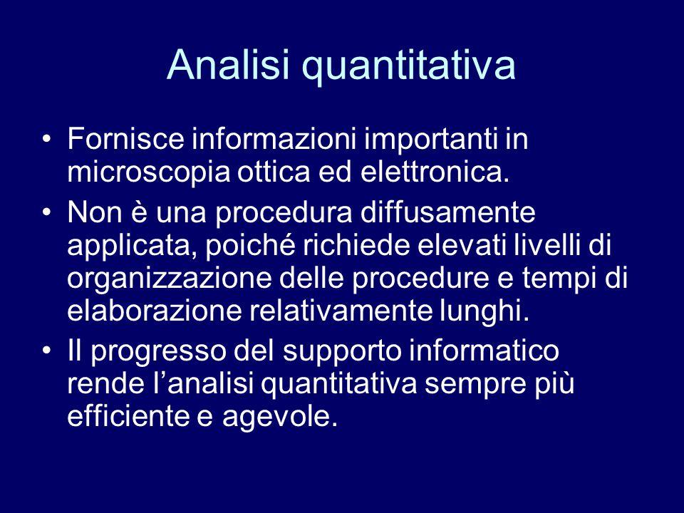 Analisi quantitativa Fornisce informazioni importanti in microscopia ottica ed elettronica.