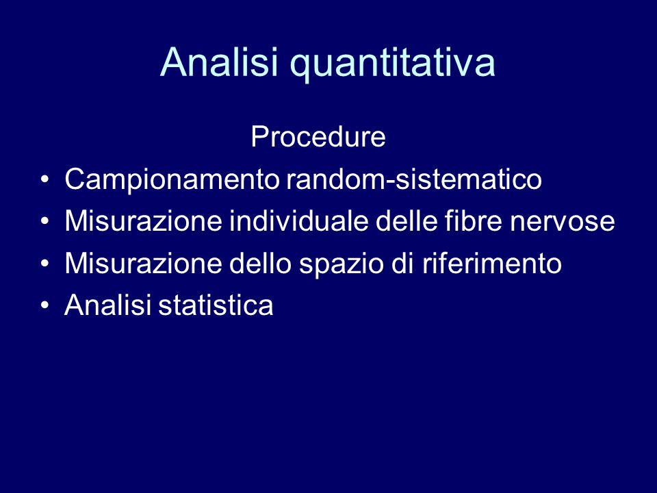 Analisi quantitativa Procedure Campionamento random-sistematico