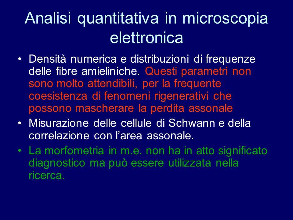 Analisi quantitativa in microscopia elettronica