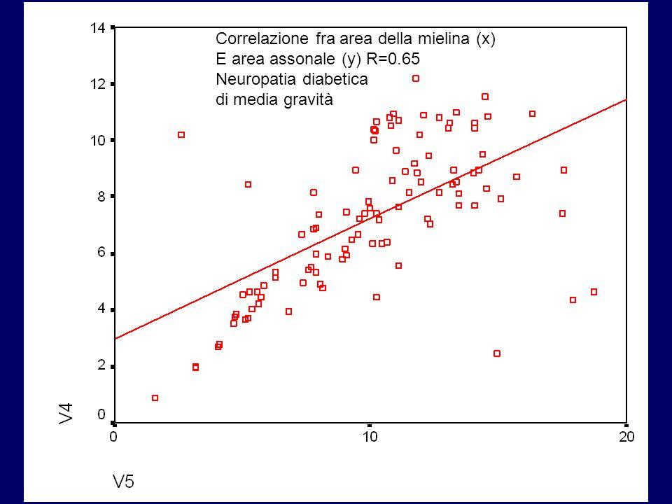 Correlazione fra area della mielina (x)