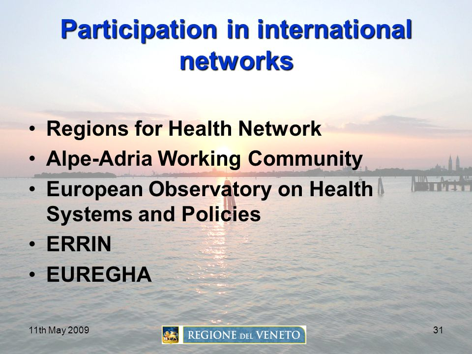 Participation in international networks