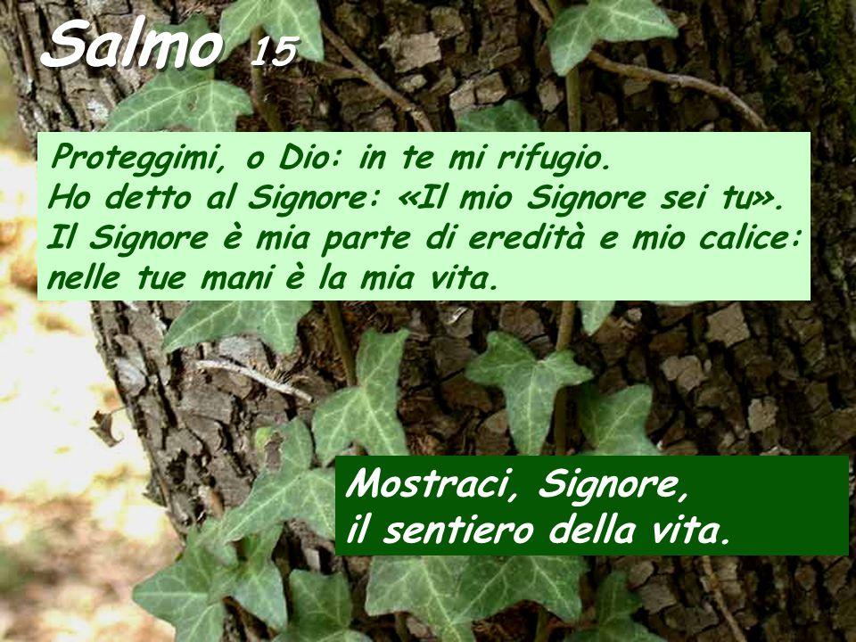 Salmo 15 Mostraci, Signore, il sentiero della vita.