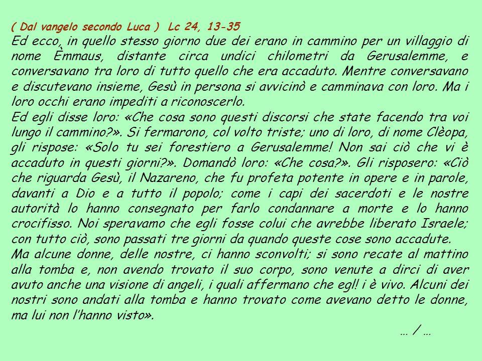 ( Dal vangelo secondo Luca ) Lc 24, 13-35