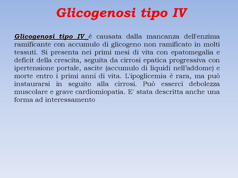 Glicogenosi tipo IV